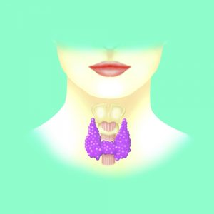 illustration of thyroid on green background